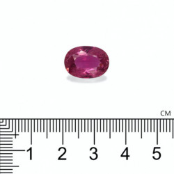 BOUCLES D'OREILLES DIAMANTS 2.00 CARATS VENDÔME OR JAUNE 18K - 750/1000