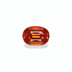 ALLIANCE DIAMANTS ELLE OR BLANC 18K - 750/1000
